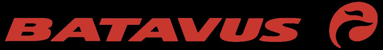 https://vandeweteringfietsen.nl/new/wp-content/uploads/2019/10/batavus-logo.png